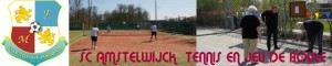 Tennis en jeu de boules